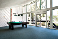 Pool Table/Clubhouse
